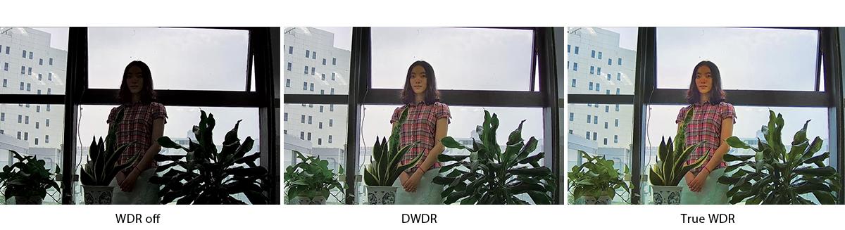 functia WDR a cemerelor de supraveghere